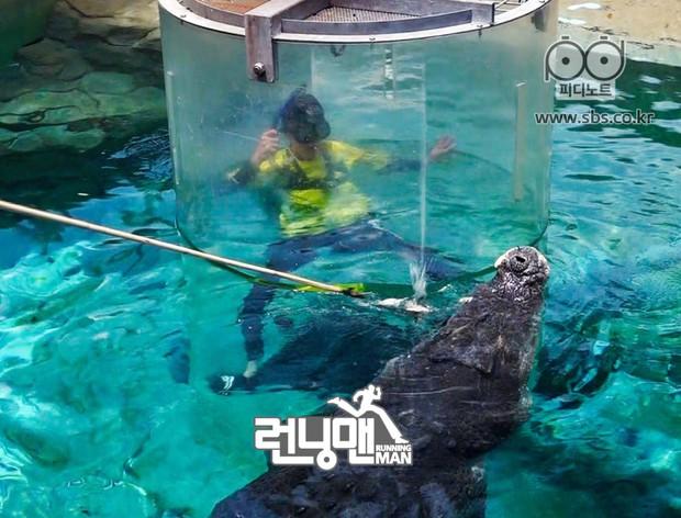 Sợ hãi tột độ, Lee Kwang Soo vẫn dành cho nàng cá sấu này 1 nụ hôn! - Ảnh 5.