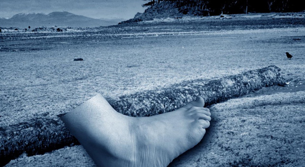 Lại tìm thấy chân người trôi dạt vào bờ biển Columbia, và bí ẩn thập kỷ nay đã có lời giải - Ảnh 3.