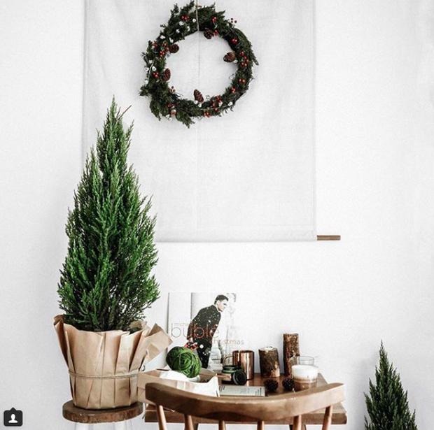 Noel năm nay, giới trẻ hai miền thi nhau mua cây tùng về chăm và chụp ảnh sống ảo - Ảnh 10.