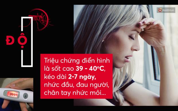 Dịch sốt xuất huyết đang ở ngay cạnh rồi: cần biết ngay các triệu chứng để phát hiện và chữa kịp thời - Ảnh 1.