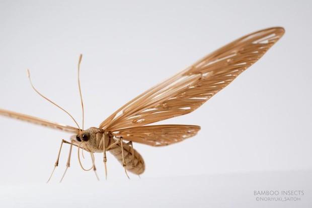 Bộ sưu tập côn trùng tre giống hệt đồ thật của nghệ nhân Nhật Bản - Ảnh 7.