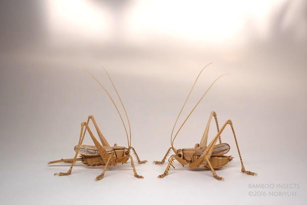 Bộ sưu tập côn trùng tre giống hệt đồ thật của nghệ nhân Nhật Bản - Ảnh 19.