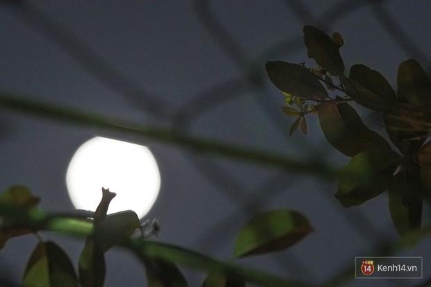 Lác mắt trước chùm ảnh siêu Mặt trăng trên bầu trời Việt Nam và thế giới - Ảnh 5.