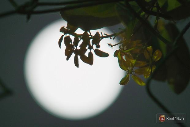 Lác mắt trước chùm ảnh siêu Mặt trăng trên bầu trời Việt Nam và thế giới - Ảnh 1.