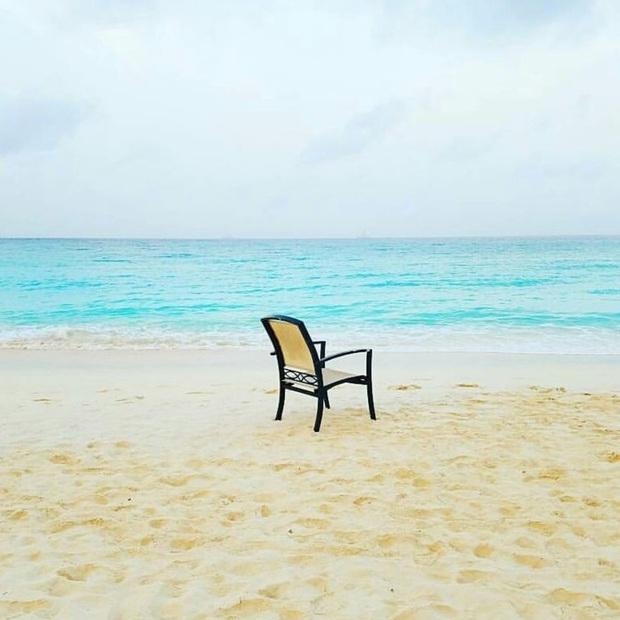 Nóng như thế này chỉ muốn đến ngay chốn thiên đường này tắm biển, chụp ảnh sống ảo cùng hồng hạc mà thôi! - Ảnh 20.