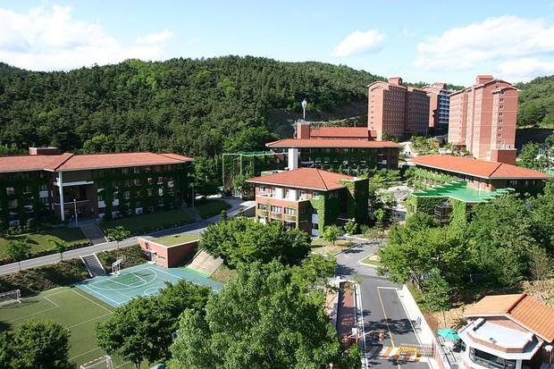 Hơn 100 phim Hàn đều chọn ngôi trường đại học tuyệt đẹp này làm bối cảnh ghi hình - Ảnh 10.