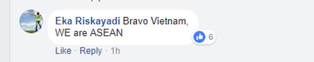Người hâm mộ Indonesia hết lòng ủng hộ đội U23 Việt Nam: Việt Nam, các bạn không bao giờ đơn độc - Ảnh 3.
