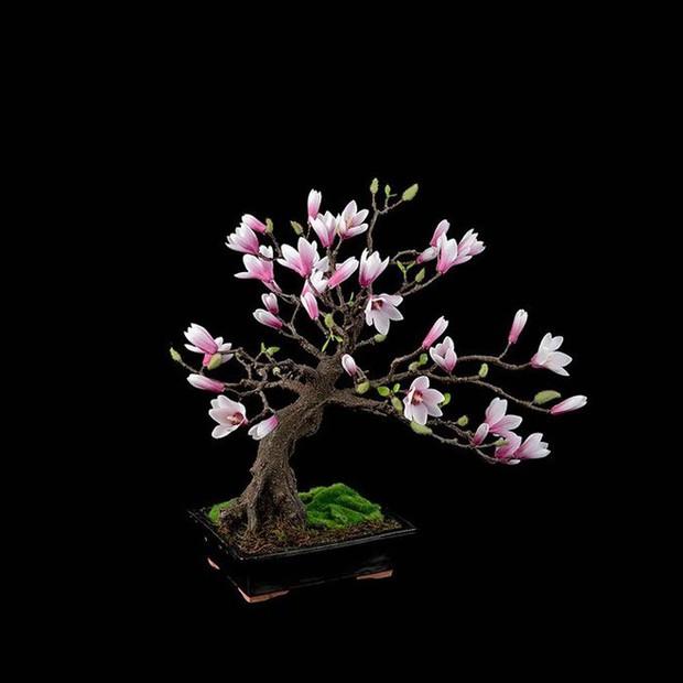 Ngất ngây với 15 chậu hoa bonsai mini siêu đẹp để trang trí nhà dịp Tết - Ảnh 12.