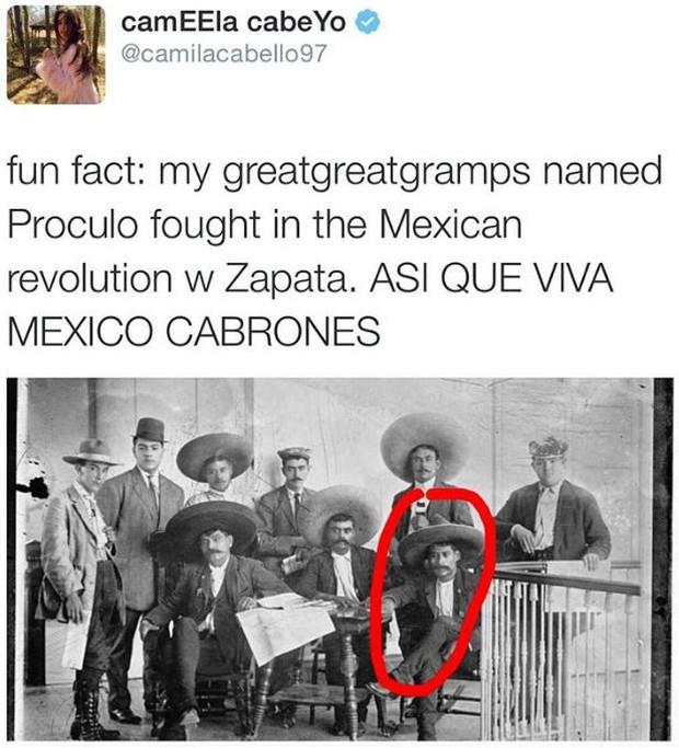 15 sự thật thú vị về Camila Cabello - chủ nhân hit Havana, hiện tượng mới của làng nhạc thế giới - Ảnh 14.