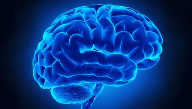 Mất một tay ư? Chẳng sao cả, vì não bạn sẽ nhanh chóng huấn luyện phần cơ thể khác làm công việc đó - Ảnh 1.