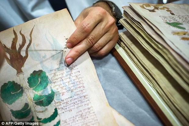 Mật mã 600 năm trong cuốn sách bí ẩn nhất thế giới sắp được giải. Công lao lớn nhất không thuộc về con người - Ảnh 1.