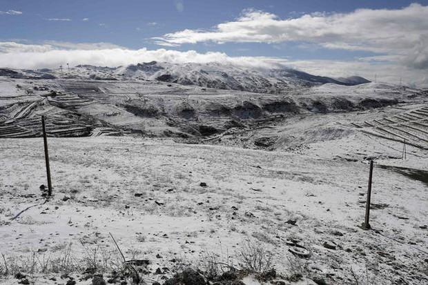 Không chỉ ở Thường Châu mới lạnh, Ả Rập Xê-út vốn nổi tiếng nắng nóng cũng có tuyết rơi rồi - Ảnh 7.