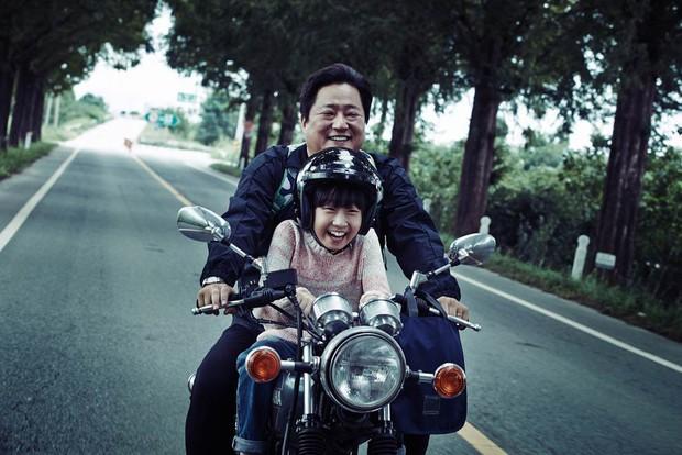 """8 phim Hàn vẫn hốt bạc dù bị ủ men lâu đến mức cứ tưởng vĩnh viễn """"đắp chiếu"""" - Ảnh 7."""