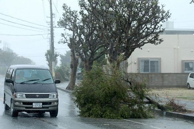 Nhật Bản tê liệt vì bão Trami, chuẩn bị đối mặt bão mới - Ảnh 1.