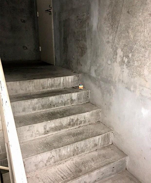 Chuyện con gián chết ngửa bụng trên cầu thang và những tình tiết hài hước theo sau làm khuynh đảo MXH quốc tế - Ảnh 2.