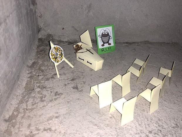 Chuyện con gián chết ngửa bụng trên cầu thang và những tình tiết hài hước theo sau làm khuynh đảo MXH quốc tế - Ảnh 9.