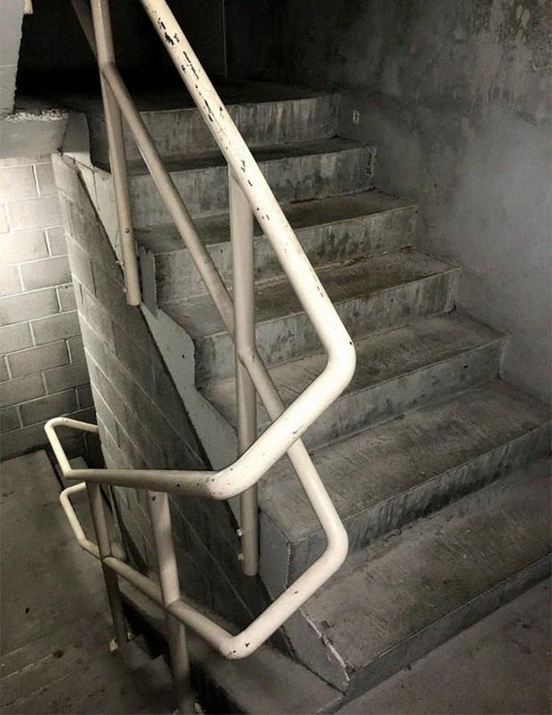 Chuyện con gián chết ngửa bụng trên cầu thang và những tình tiết hài hước theo sau làm khuynh đảo MXH quốc tế - Ảnh 13.