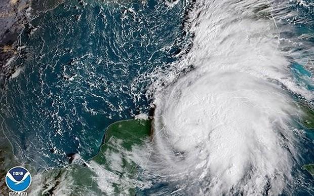 Bão Michael mạnh lên thành bão cấp 3 khi đổ bộ vào Mỹ - Ảnh 1.