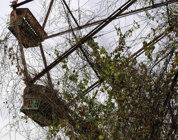 Công viên bỏ hoang Lake Shawnee: Xây dựng trên nghĩa địa của thổ dân bản xứ, hàng loạt cái chết xảy ra từ khi mới khánh thành - Ảnh 6.
