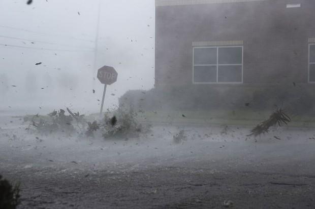 Siêu bão Michael đổ bộ vào Mỹ và Panama với sức tàn phá khủng khiếp - Ảnh 15.