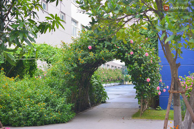 Bắc có ĐH Thăng Long, Nam có ĐH RMIT: Đây chắc chắn là 2 ngôi trường đẹp, sang chảnh, xịn sò nhất Việt Nam - Ảnh 6.
