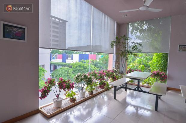 Bắc có ĐH Thăng Long, Nam có ĐH RMIT: Đây chắc chắn là 2 ngôi trường đẹp, sang chảnh, xịn sò nhất Việt Nam - Ảnh 4.