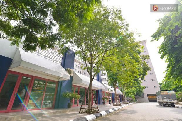 Bắc có ĐH Thăng Long, Nam có ĐH RMIT: Đây chắc chắn là 2 ngôi trường đẹp, sang chảnh, xịn sò nhất Việt Nam - Ảnh 12.