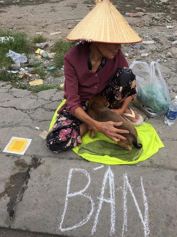Xúc động hình ảnh cụ bà mắc bệnh nên phải bán chó con, cho người khác nuôi chó mẹ vì không nuôi nổi - Ảnh 1.