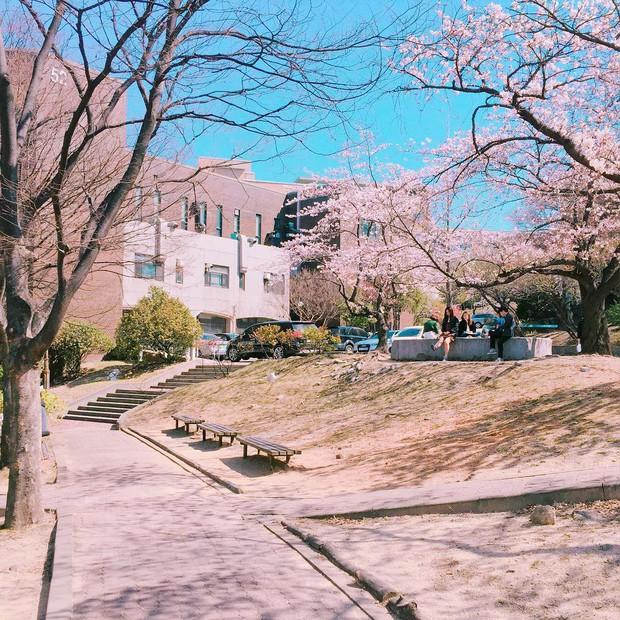 Đây là ngôi trường đã đào tạo ra hàng loạt tên tuổi gạo cội của làng giải trí Hàn Quốc như Lee Soon-jae, Kim Tae-hee - Ảnh 3.