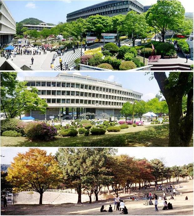 Đây là ngôi trường đã đào tạo ra hàng loạt tên tuổi gạo cội của làng giải trí Hàn Quốc như Lee Soon-jae, Kim Tae-hee - Ảnh 7.