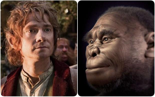 Thêm bằng chứng chỉ ra thủ phạm đã hủy diệt tộc Hobbit huyền thoại chính là con người hiện đại - Ảnh 1.