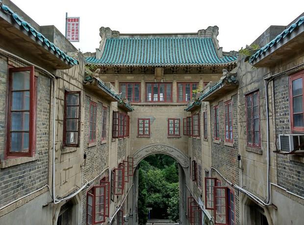Mê mệt với vẻ đẹp tựa tranh vẽ của ngôi trường được mệnh dành là Đại học hoa anh đào ở Trung Quốc - Ảnh 5.