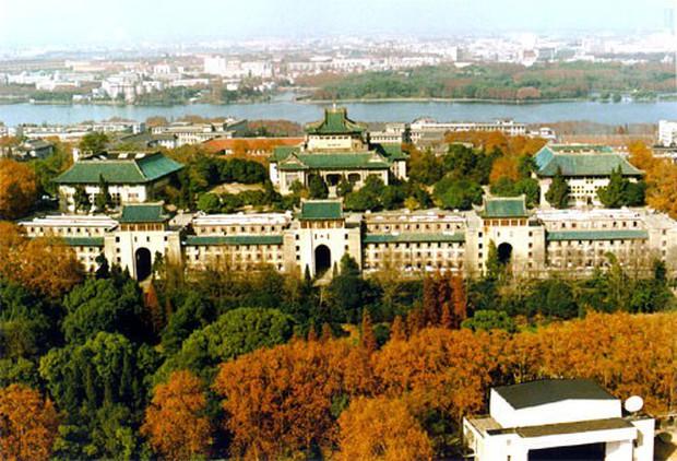 Mê mệt với vẻ đẹp tựa tranh vẽ của ngôi trường được mệnh dành là Đại học hoa anh đào ở Trung Quốc - Ảnh 6.