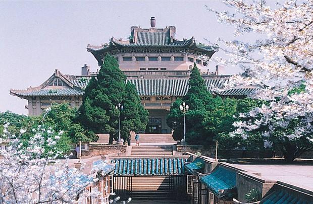 Mê mệt với vẻ đẹp tựa tranh vẽ của ngôi trường được mệnh dành là Đại học hoa anh đào ở Trung Quốc - Ảnh 2.