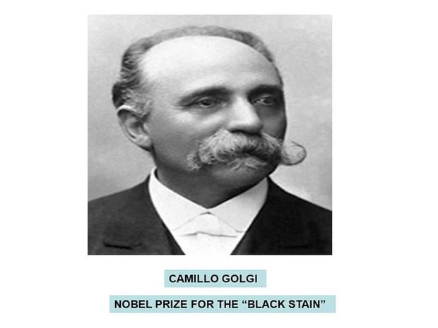 Giải Nobel Y học: Những thành tựu y khoa nổi bật nhất thế giới - Ảnh 3.