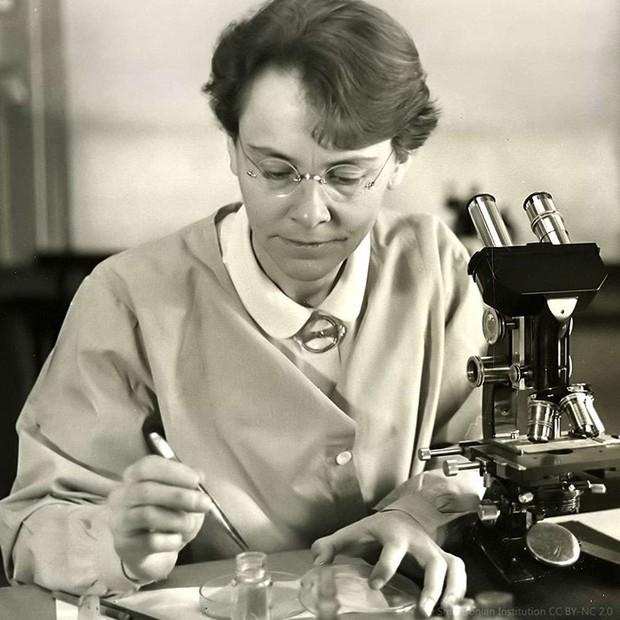 Giải Nobel Y học: Những thành tựu y khoa nổi bật nhất thế giới - Ảnh 7.