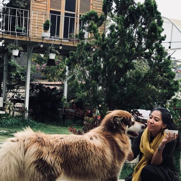 Check-in ngay loạt hàng quán, homestay mà Hà Tăng và hội bạn thân vừa vi vu ở Đà Lạt  - Ảnh 27.