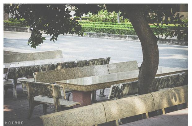 Trường Đại học dễ thương, lãng mạn nhất Sài Gòn, nơi có ghế đá FA dành cho người cô đơn nổi đình nổi đám một thời - Ảnh 20.