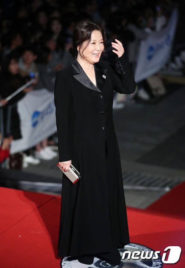 Thảm đỏ Oscar Hàn Quốc 2018: Nàng cháo và loạt mỹ nhân thi nhau o ép vòng 1, Seolhyun sang như bà hoàng - Ảnh 33.