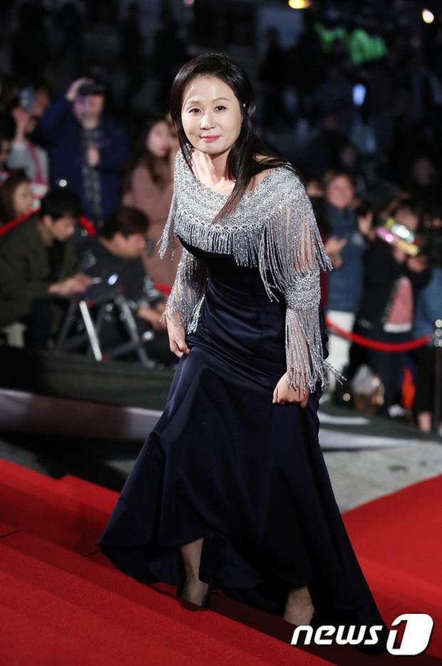 Thảm đỏ Oscar Hàn Quốc 2018: Nàng cháo và loạt mỹ nhân thi nhau o ép vòng 1, Seolhyun sang như bà hoàng - Ảnh 31.