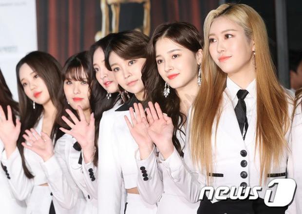 Thảm đỏ Oscar Hàn Quốc 2018: Nàng cháo và loạt mỹ nhân thi nhau o ép vòng 1, Seolhyun sang như bà hoàng - Ảnh 21.