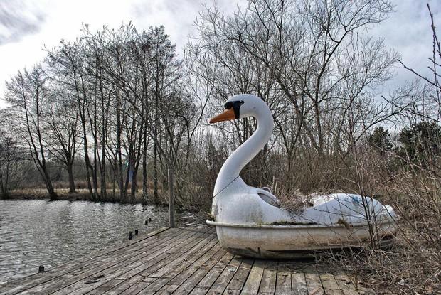 Cảnh hoang tàn đầy ma mị như phim kinh dị của công viên nước bị chìm vào quên lãng suốt 12 năm vì phá sản - Ảnh 21.