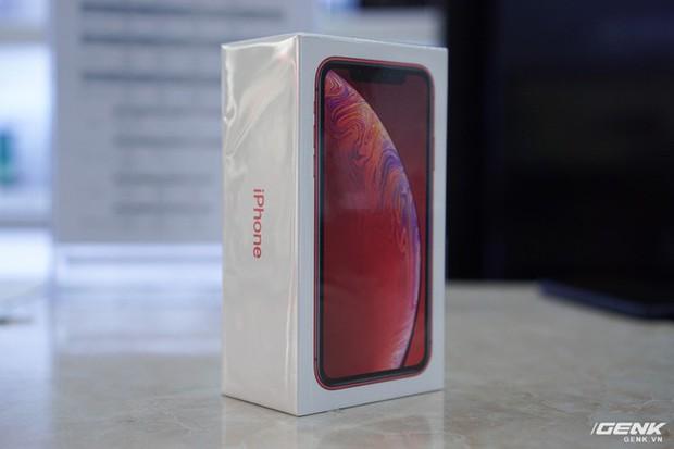 Giá iPhone XR về Việt Nam từ 24 triệu đồng - Ảnh 1.