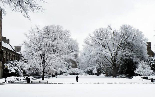 Đã mắt ngắm ngôi trường Đại học đẹp như lâu đài cổ tích dưới trời tuyết trắng xóa - Ảnh 3.