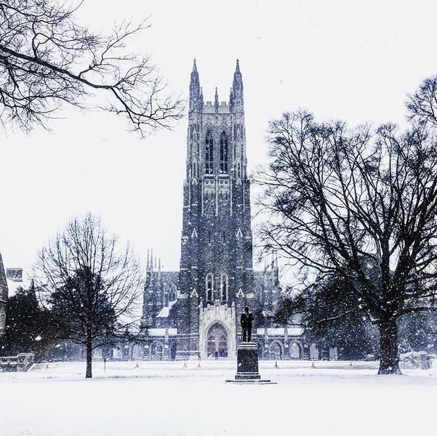 Đã mắt ngắm ngôi trường Đại học đẹp như lâu đài cổ tích dưới trời tuyết trắng xóa - Ảnh 21.