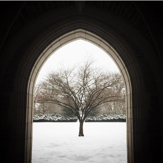 Đã mắt ngắm ngôi trường Đại học đẹp như lâu đài cổ tích dưới trời tuyết trắng xóa - Ảnh 2.