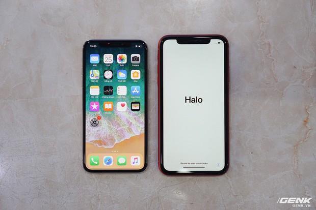 iPhone XR: Giá iPhone XR rớt giá từ 23,9 triệu còn 20,9 triệu- Ảnh 2.