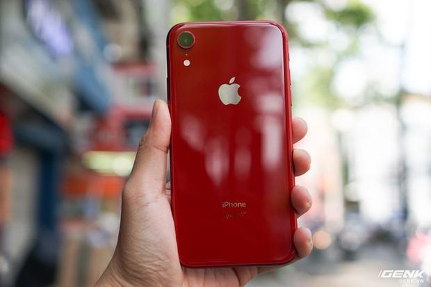 iPhone XR: Giá iPhone XR rớt giá từ 23,9 triệu còn 20,9 triệu- Ảnh 1.