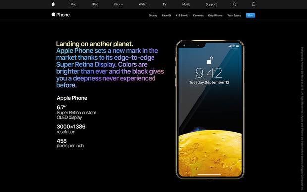 iPhone XS còn chưa kịp nguội, iPhone 2019 lập tức debut bằng concept bao xịn miễn chê - Ảnh 4.