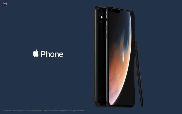 iPhone XS còn chưa kịp nguội, iPhone 2019 lập tức debut bằng concept bao xịn miễn chê - Ảnh 9.